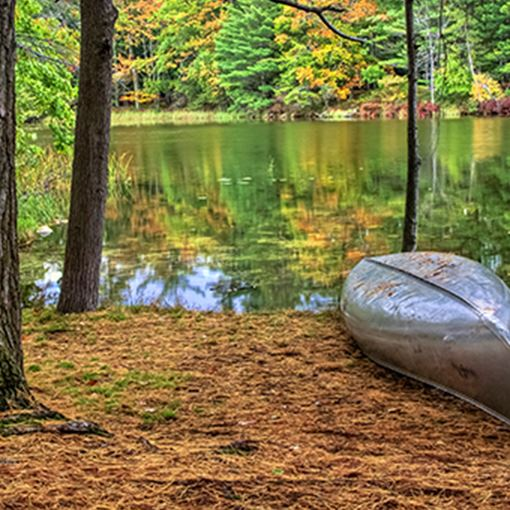 Aluminum canoe along the forested lakeshore